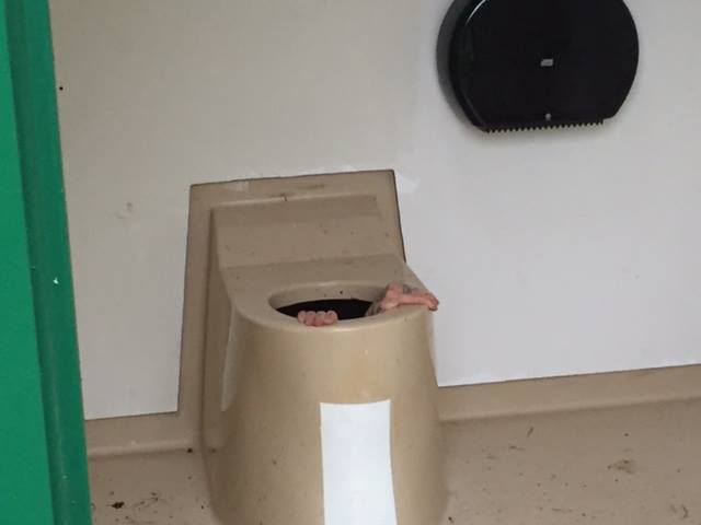 Norway Man Stuck in Toilet Tank for Saving His Friend�s Phone